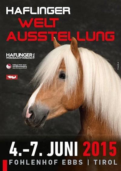 Weltausstellung_Halfinger_2015_Tirol